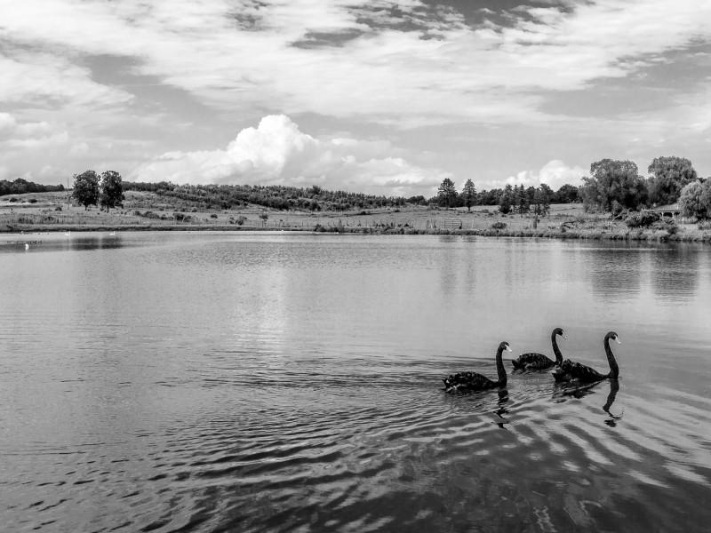BW_Lake